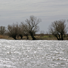 река Подстепка