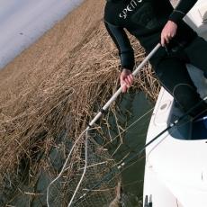 Ловля щуки на спиннинг на реке Подстепка