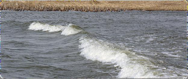 Волна на реке Подстепка